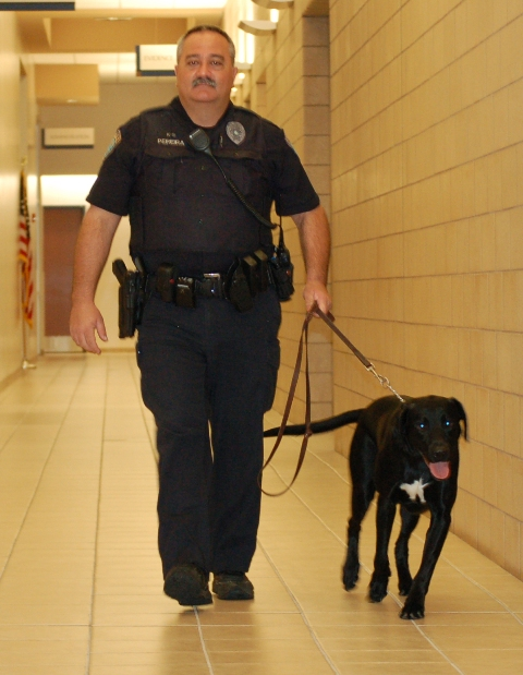 Officer and K-9