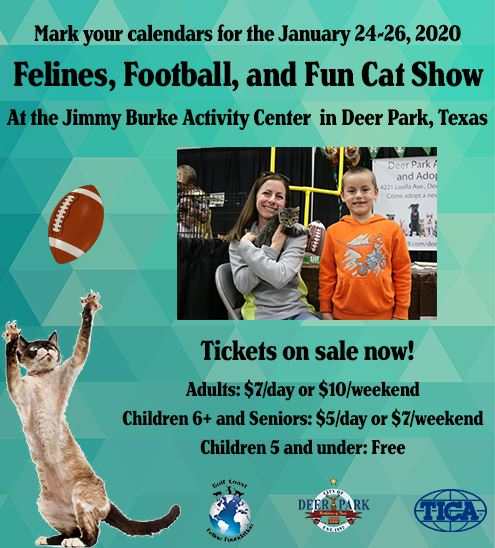 "Cat Show flyer - Devon Rex cat catching football with text reading ""Felines, Football, and Fun"